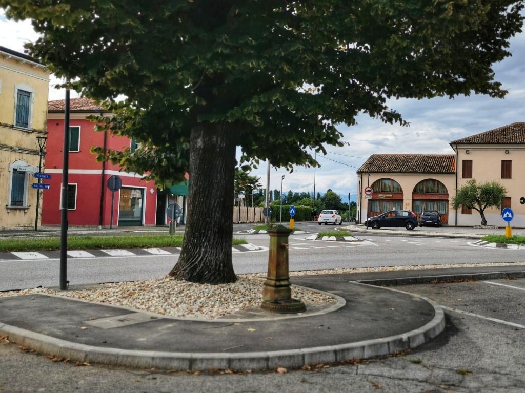 piazza, albero, pompa