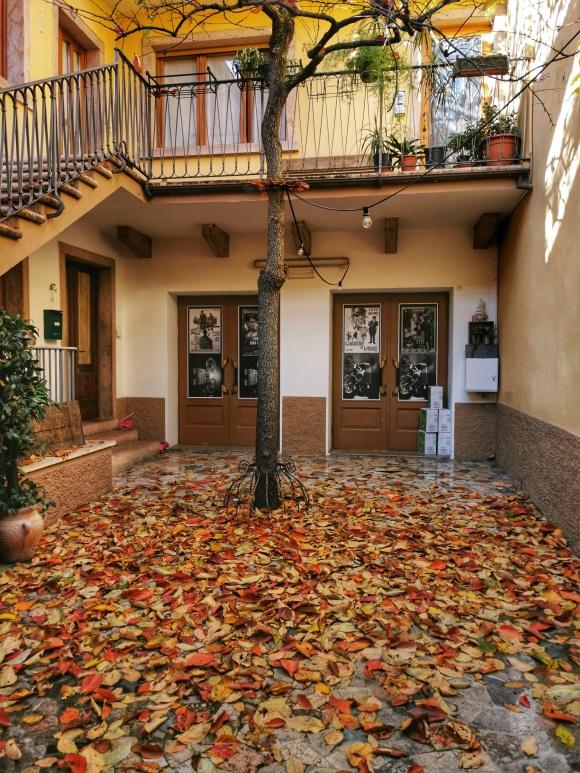 Albero e foglie